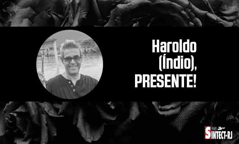 LUTO: Haroldo (Índio)